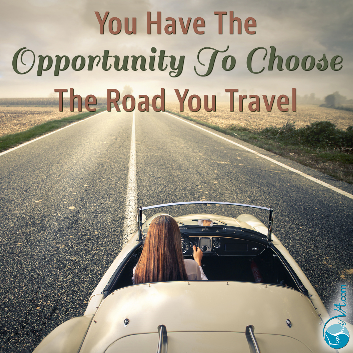 Top Shelf VA Services: You have the opportunity to choose the road you travel.