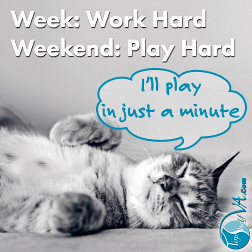Top Shelf VA Services: Week: Work Hard / Weekend: Play Hard / I'll play in just a minute