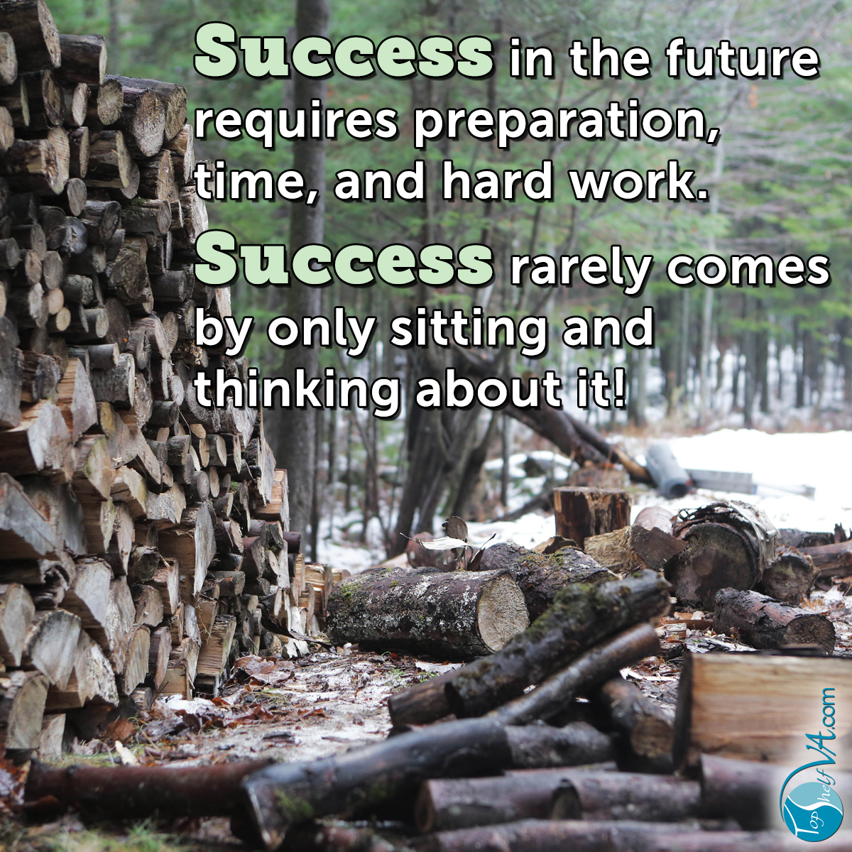 Top Shelf VA Services: Success in the future requires preparation, time, and hard work. Success rarely comes by only sitting and thinking about it!