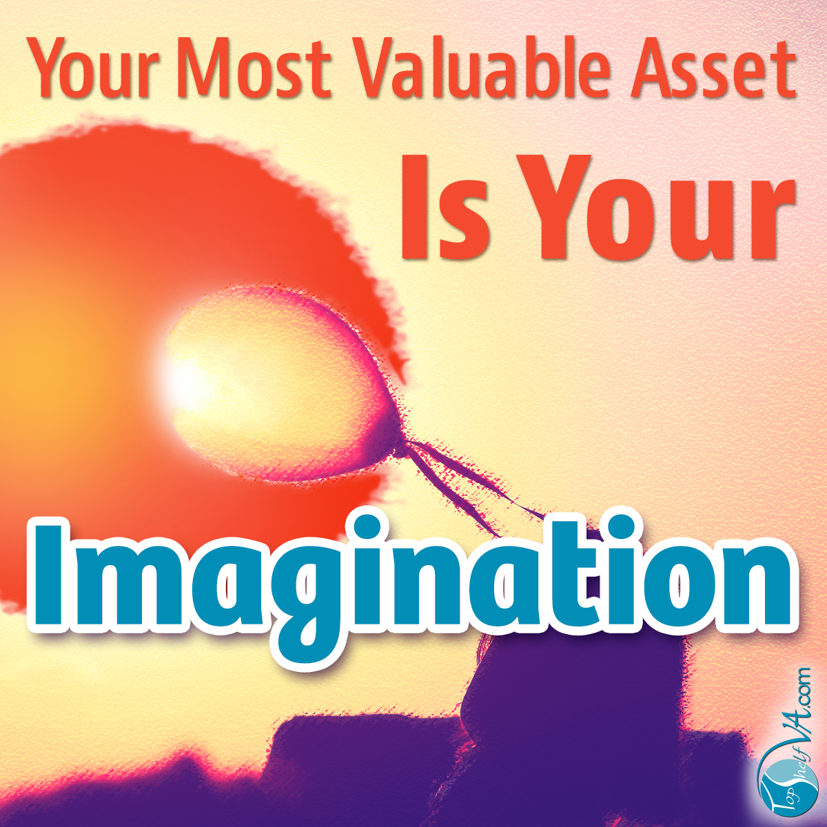 Top Shelf VA Services: Your Most Valuable Asset Is Your Imagination
